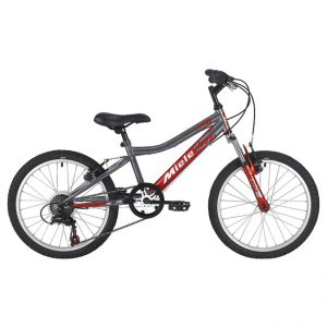 MIELE 202 bike